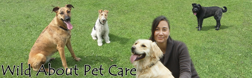 Wild About Pet Care